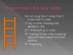 the parent ladder2