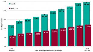 obesity graph